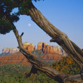 Sedona Spirit Essential Oil Blend