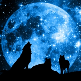 Wolf Super Moon Essential Oil Blend