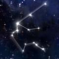 Aquarius Astrological Flower Essence
