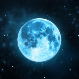 Moon Astrological Flower Essence