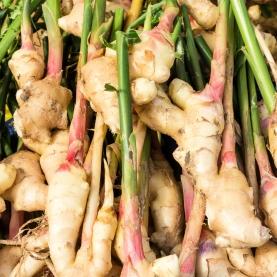 Ginger Organic Hydrosol