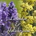 Lavender/Helichrysum Co-distill Organic Hydrosol