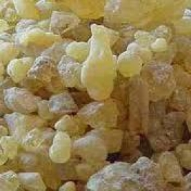 Frankincense carterii Resin (Organic)