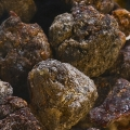 Frankincense Neglecta Wild Harvested Resin
