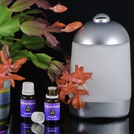 Aromatherapy Diffuser - Spa Vapor Mist