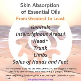 """Aromatherapy and THE SKIN """"Mini Course"""" ALMOST FREE"""