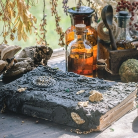 Online Workshop: Medicinal and Metaphysical Remedies Certificate Course