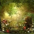 Vibrational Aromatic Medicine Certificate Course - LIVE ONLINE