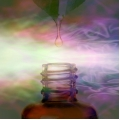 Introductory Class in Vibrational Aromatherapy - ALMOST FREE