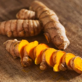 Turmeric (Curcuma) Co2 Total Extract