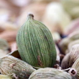 Cardamom Crafting & Cleaning Essential Oil