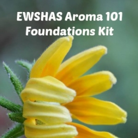 School of Aromatic Studies 101 Foundations Complete Kit