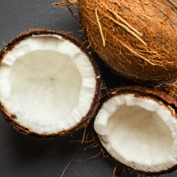 Coconut Pulp Co2 Select Extract - Organic