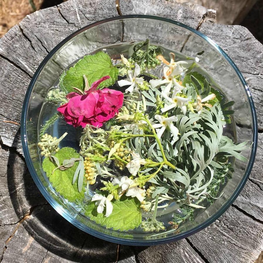 Grief Flower Essence Stillpoint Aromatics